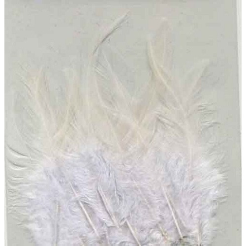 Feathers White in Header Bag 9-15cm - 15 Pcs