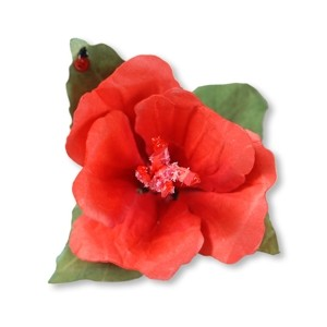 Thinlits Die Set Flower, Hibiscus Susan Tierney-Cock