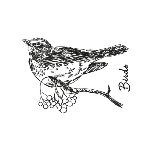 Studio Light Clear Stempel, A6, nr 84,  Vogel