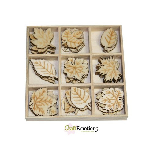 CraftEmotions Houten ornamenten - Bladeren 45 pcs - box 10,5 x 1