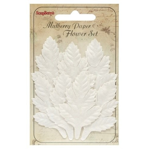 ScrapBerry`s Set Of Leaflets 7 pcs Cedar White