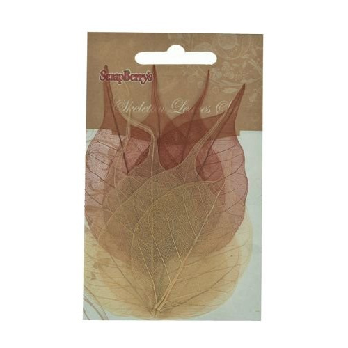 ScrapBerry's Skeleton Leaves Set Of 8 - Dual-Tone Banyan Tree Br