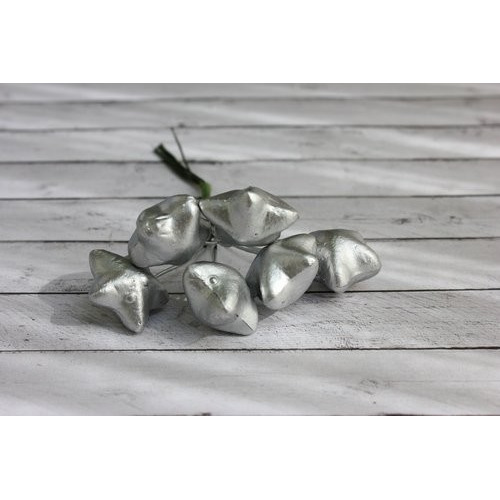 ScrapBerry's Stars In The Bundle, Silver, 6 pcs