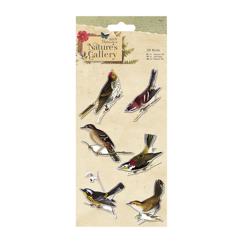 3D Birds (6pcs) - Nature`s Gallery