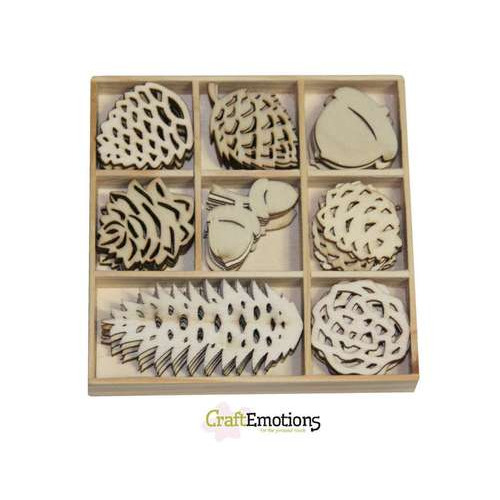 CraftEmotions Houten ornamenten doosje WinterWoods denneappel 40 pcs - box 10,5 x 10,5 cm
