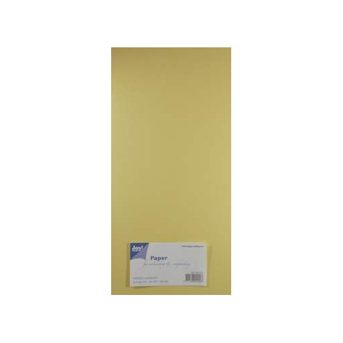 Joy! Crafts Metallic cardstock karton 20 vel 15x30 cm creme - 8013/0127