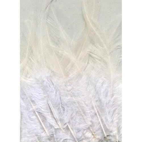 1 ST (1ST) Veren wit 9-15 cm 15 ST