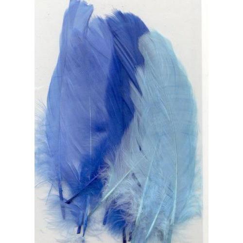 1 ST (1ST) Veren blauw mix 12,5-17,5 cm 15 ST