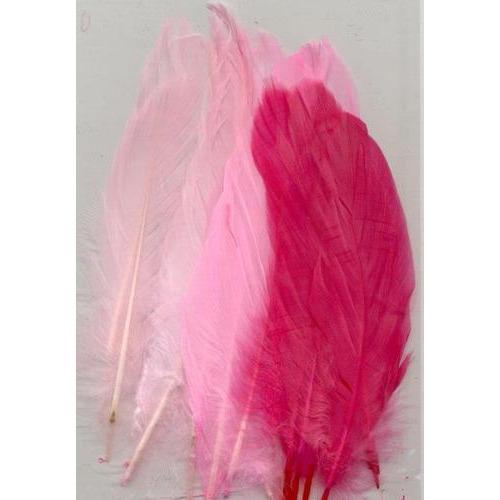1 ST (1ST) Veren roze mix 12,5-17,5 cm 15 ST