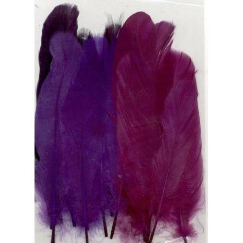 1 ST (1ST) Veren paars mix 12,5-17,5 cm 15 ST