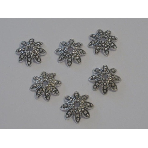 Kralenkapjes platinum 14MM 6 ST 12253-5303