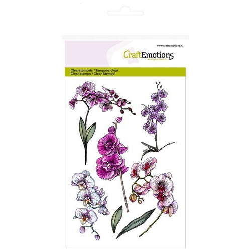 CraftEmotions clearstamps A6 - orchidee takken