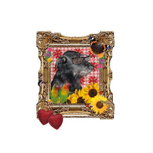 Dog in frame