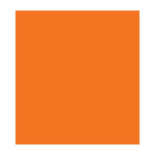 Vilt Oranje