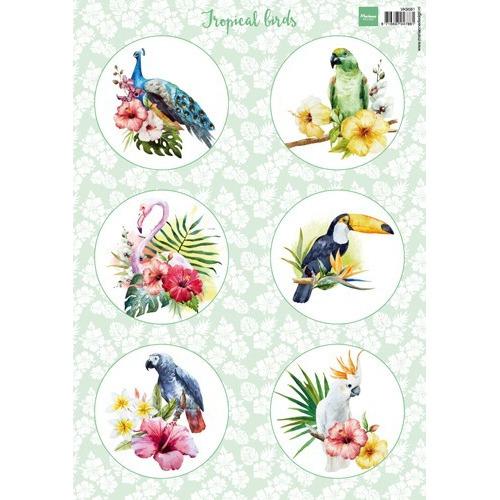 Marianne D 3D Knipvellen Tropical birds VK9561 A4 (07-17)