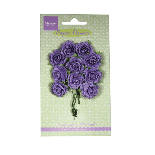 Carnations - dark lavender