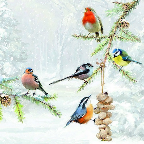 CraftEmotions servetten 5st - Winter vogels 2 33x33cm Ambiente 33310580