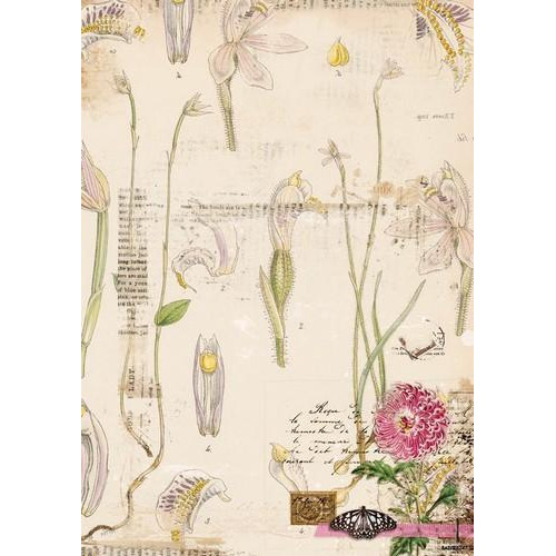 Studio Light Achtergrondpapier 1 vel A4 Romantic Botanic 247 BASISRB247 (09-17)