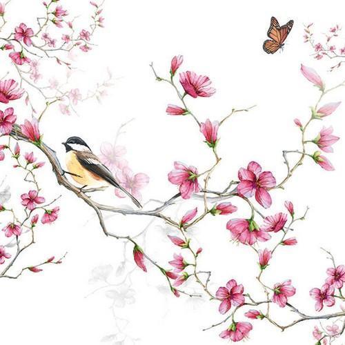 CraftEmotions servetten 5st - Vogel en bloesem 33x33cm Ambiente 13311215