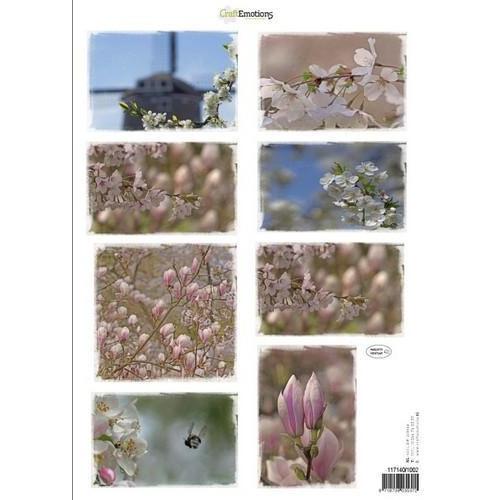 CraftEmotions Knipvellen voorjaarsbloemen 2 roze A4 160 grm (02-18)