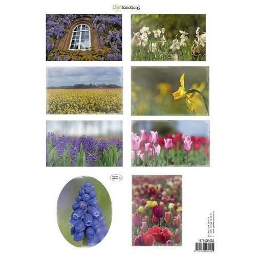 CraftEmotions Knipvellen voorjaarsbloemen 3 mix A4 160 grm (02-18)