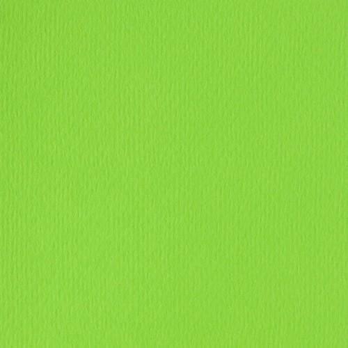 Papicolor Scrapbook 302x302mm lentegroen 200gr-CV 10 vel 298952 - 302x302mm