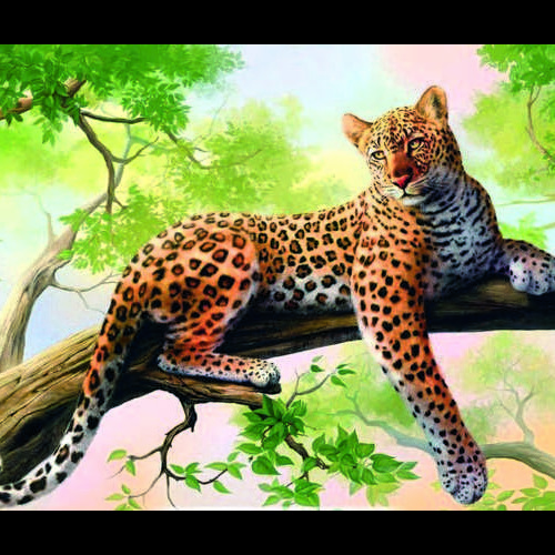 Daimond painting30x40 panter