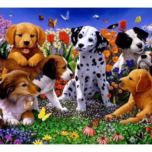 Daimond painting30x40 honden