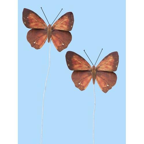 Vlinders XI, Btl. a 2 St.