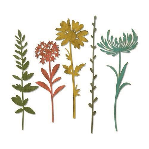 Sizzix Thinlits Die Set - 5PK Wildflower Stems #1 664163 Tim Holtz (01-19)