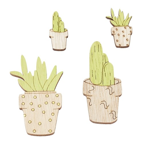 Cactussen, ca. 2,5 - 5,5 cm, buidel met 4 st