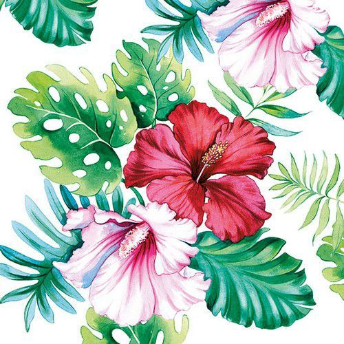 CraftEmotions servetten 5st - Hibiscus Floral 33x33cm Ambiente 13313145 (04-19)