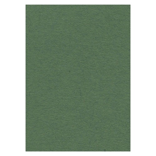 Cardstock 270 grs -50 x 70 cm - Forest Green