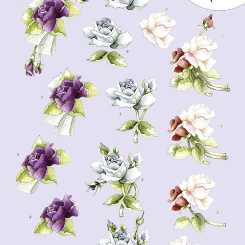 3D knipvel -Precious Marieke - Roses