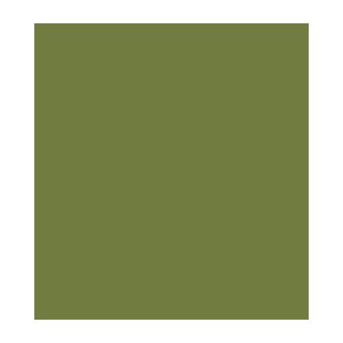Acrylics Paint, Avocado Green