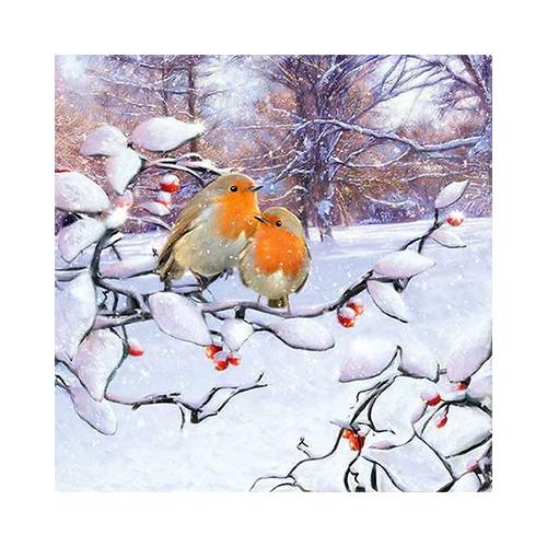 Robins On Branch