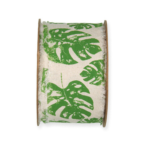 Monstera, Green