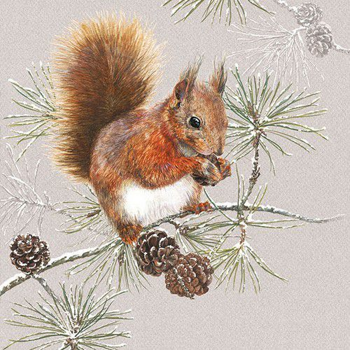 CraftEmotions servetten 5st - Eekhoorn in de winter 33x33cm Ambiente 33313445 (08-19)