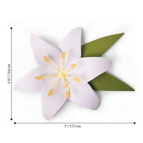 Sizzix Bigz L Die - Lily 663698 (01-20)
