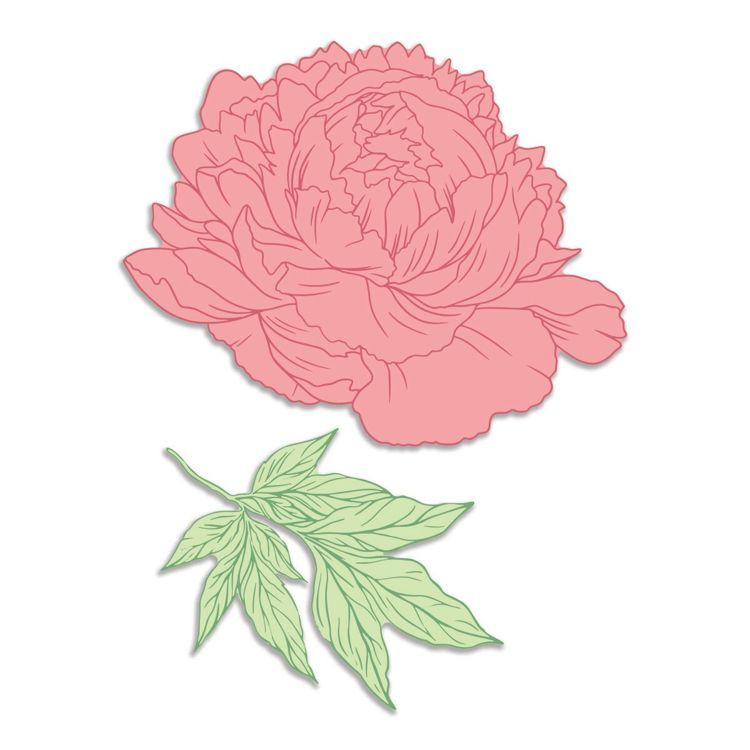 Peony & Leafy Branch Stamp and Die Set (4pc)