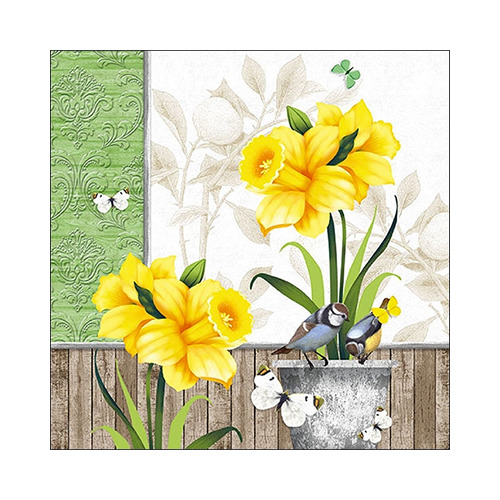 Sunny Spring