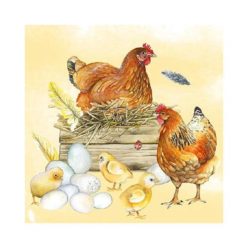 Breeding Chicken