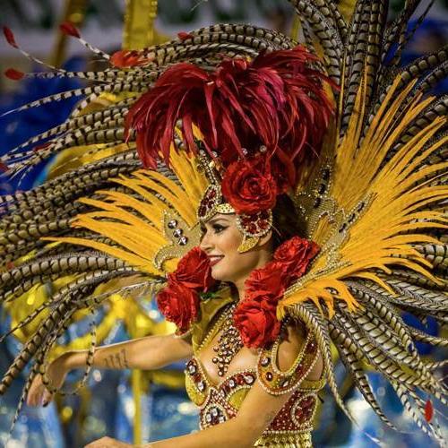 carnaval rio diamond painting carnaval rio 50 x 60