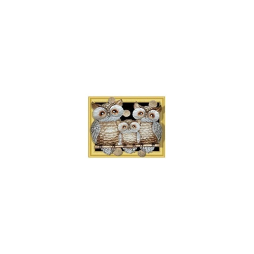 WD 118 diamond painting 3 D framed uilen 40 x 50