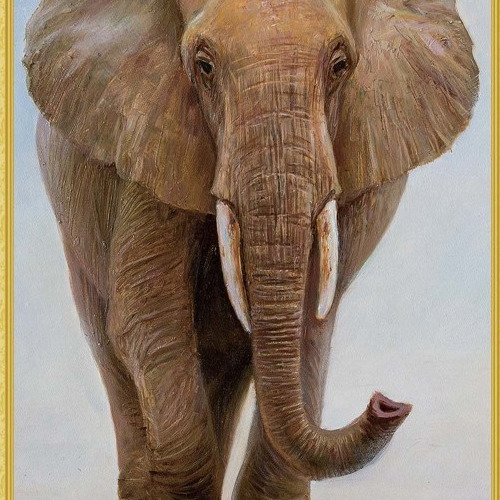 WD 109 diamond painting 3 D framed Olifant 40 x 50