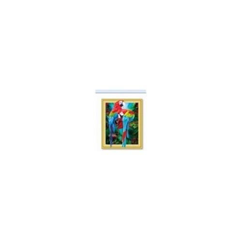 WD 06 diamond painting 3 D framed Ara's 40 x 50
