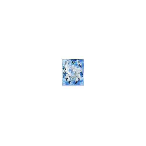 50859 diamond painting dromenvanger blauw 30 x 40