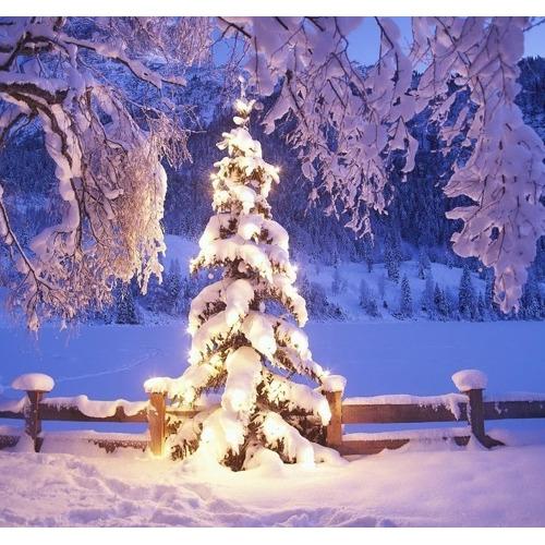 01-snow Diamond Painting vierkante steentjes - kerstboom met sneeuw