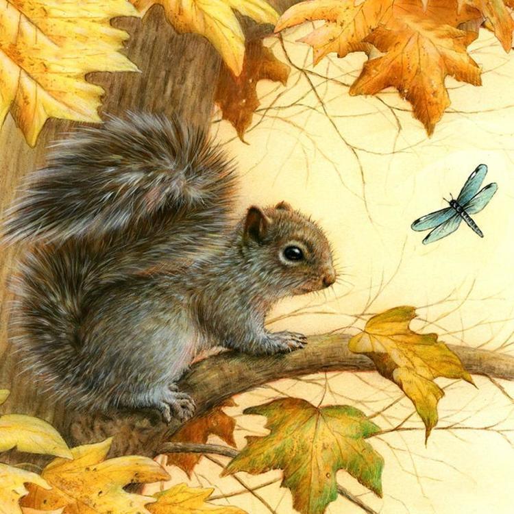 HLQ-01874 Diamond Painting rond eekhoorn op tak