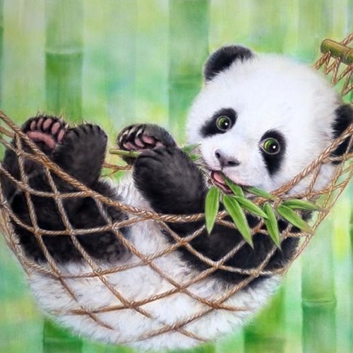HLQ-01582 Diamond Painting vierkant panda in hangmat